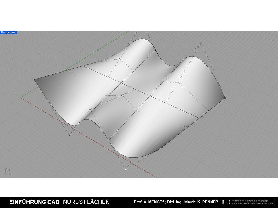 [Beispiel: dieselbe Oberfläche dargestellt mit einer Dichte von 1 und den sichtbaren, gleichen Kontrollpunkten]
